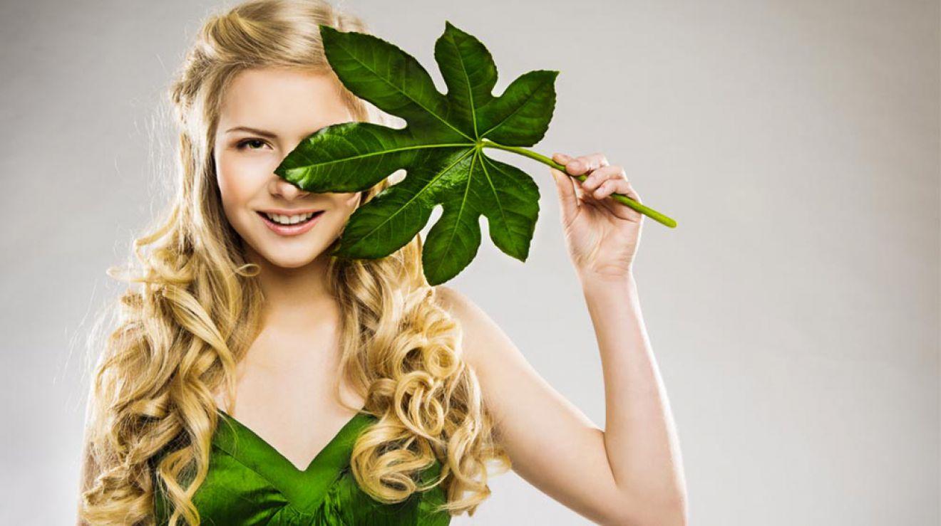 Organic And Natural Hair Salons Nyc Ny