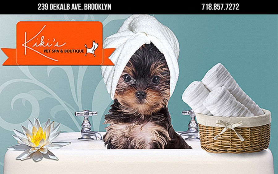Kiki's Pet Spa Brooklyn, NY 11205