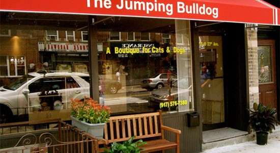 The Jumping Bulldog Astoria, NY 11105