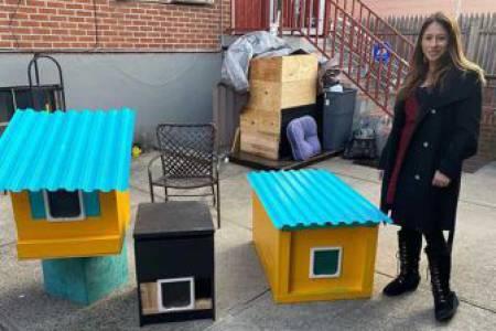 Donation Based Cat Condos by Phil Cappadora